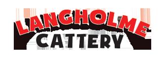 langholme-logo-text